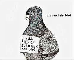 Нарциссические стыд и бесстыдтво